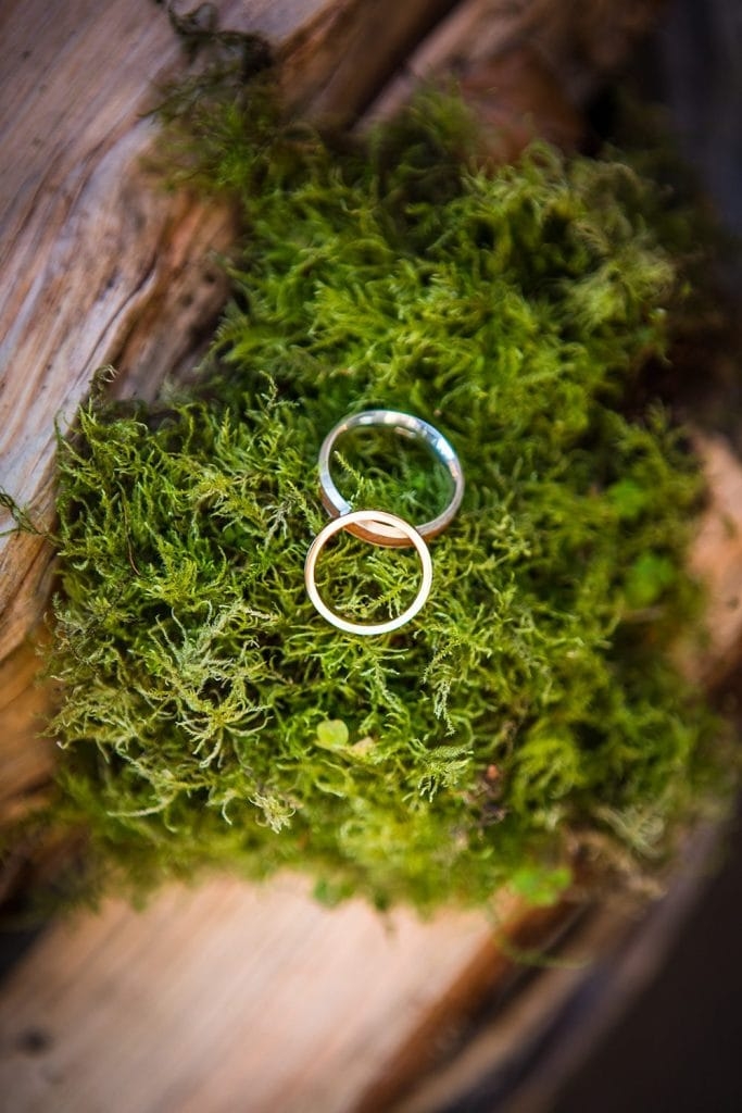 The wedding rings on a bed of moss
