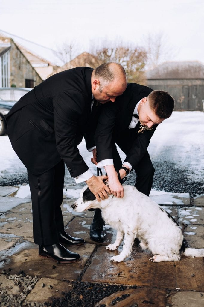 Groom putting his pet spaniels bow tie on